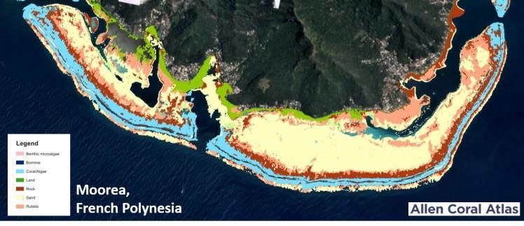 allen coral atlas - moorea