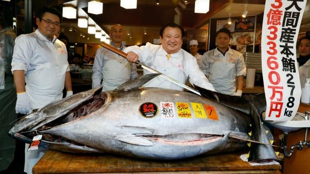 record-setting-tuna-tokyo