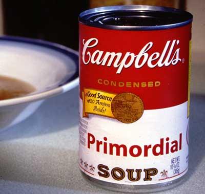 Primordial soup joke