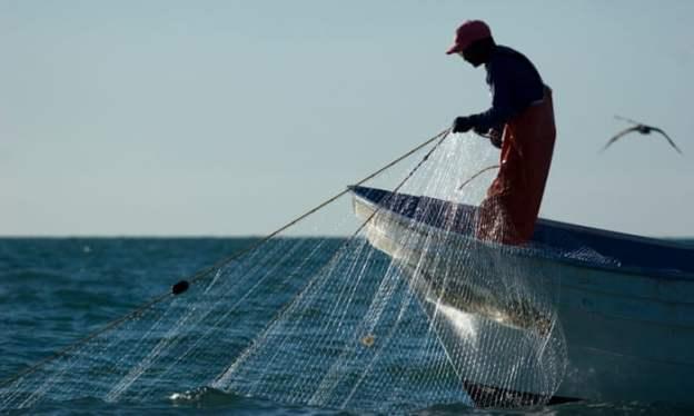 gill net fishing