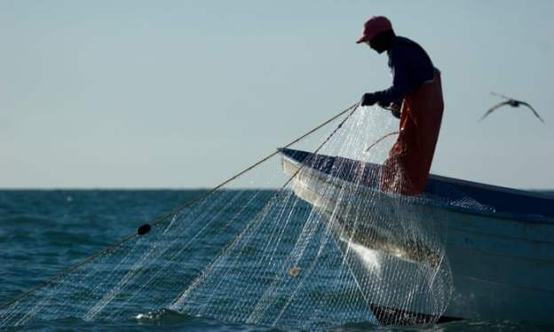 gill net fishing