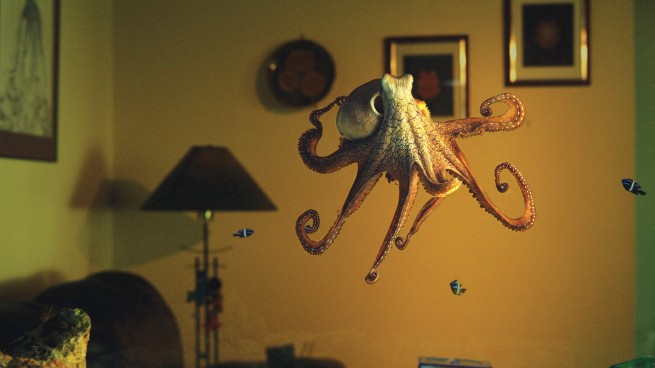 The Octopus in my House: Natural World
