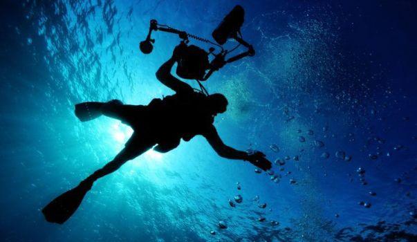 diving cameraman