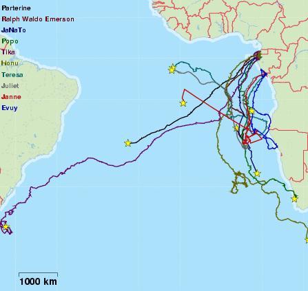 migration map