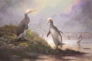 Copepteryx-Mark-Witton-2019